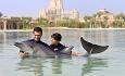 Her kan du svømme sammen med delfinene