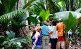 Vi kan absolutt anbefale en guidet tur i nasjonalparken Vallee de Mai som ligger på Praslin