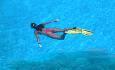 Når du er på Maldivene bør du absolutt ta en snorkletur for å oppleve det utrolige undervannslivet