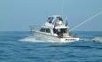 Hver vinter i februar / mars arrangeres Marlin World Cup på Mauritus